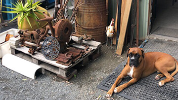 Do In Yard At Burleigh Secondhand